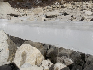 Chola Lake - this piece of ice was about 20f from the water and about 2in thick